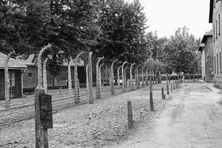 auschwitz: Electric fences at Auschwitz Editorial