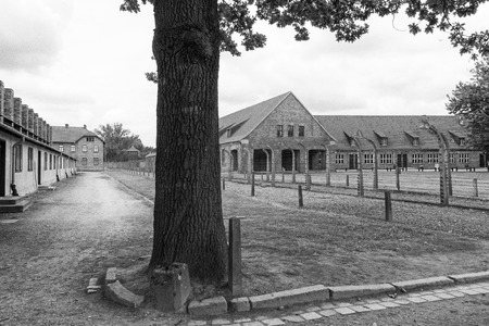 auschwitz: Within the grounds at Auschwitz