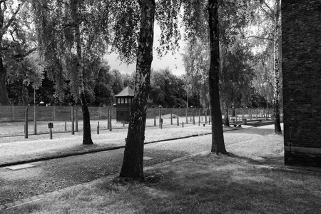 auschwitz: The grounds of Auschwitz