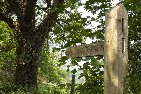 signage outdoor: Bridleway sign, England