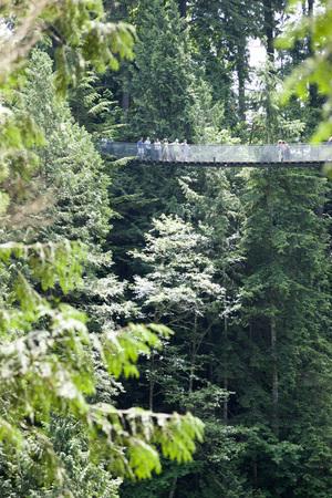 Capillano Suspension Bridge, Vancouver.