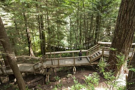 Adventure trail at Capillano park