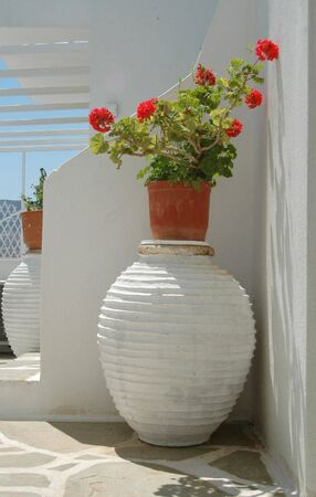 vats: geraniums in greek islands