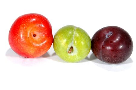 gro: plum-a-rama red, green, black plums
