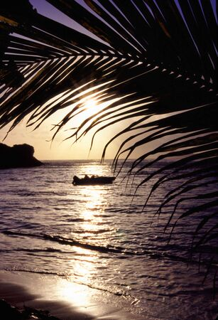 a sunset through the palm trees with a boat on the water Stock Photo