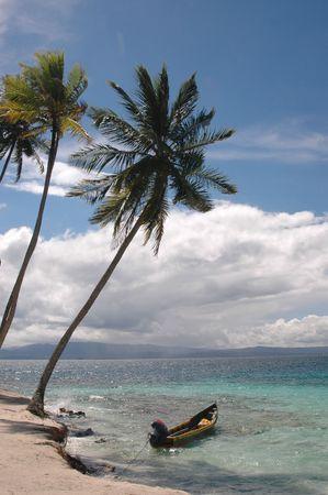 열대 지방 낙원 1021