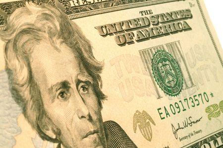 moola: usa twenty dollar bill  great detail macro