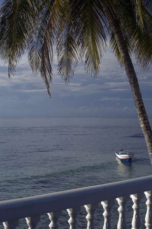 caribbean scene boat in sea with one lone palm tree nicaragua Stock Photo - 681669
