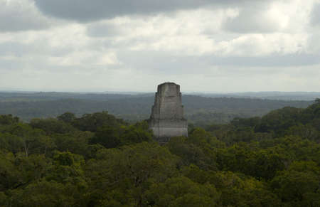 iii: temple III tikal guatemala jungle canopy roofcomb mayan ruins view from temple IV