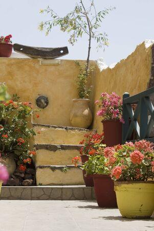 typical: santorini flower display house thira greek islands typical street scene