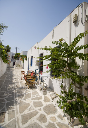 archtecture: greek island cafe street scene cyclades architecture with plants bougainvillea and flowers