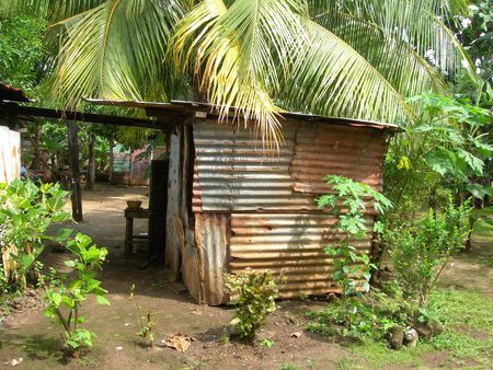 native house sheet metal tin jungle big corn island nicaragua central america Stock Photo - 2192246