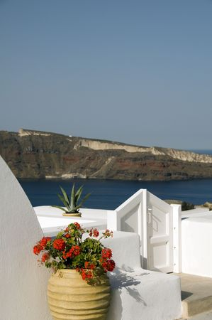 ia: flower plant residence hotel over caldera oia ia santorini greek cyclades island greece Stock Photo