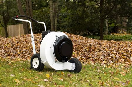 power operated: leaf blower professional push style with pile of leaves suburban home in the autumn Stock Photo