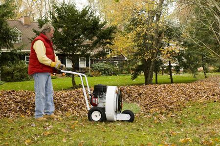 homeowner: homeowner using leaf blower professional push style with pile of leaves suburban home in the autumn