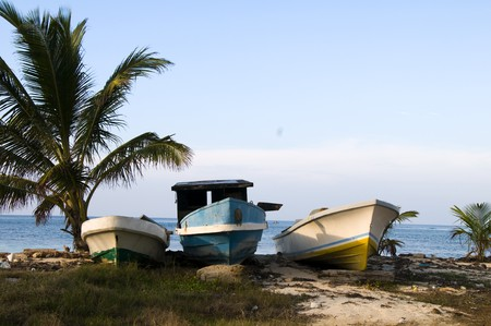 corn island: old fishing native boat seaside with coconut tree corn island nicaragua central america