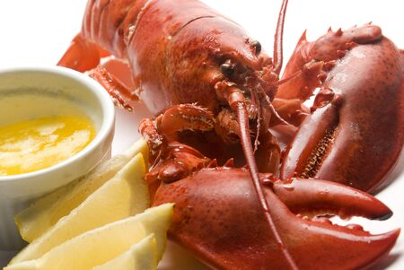 lobster isolated: whole lobster with butter and lemon slices