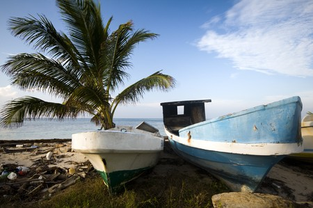 old fishing native boat seaside with coconut tree corn island nicaragua central america photo