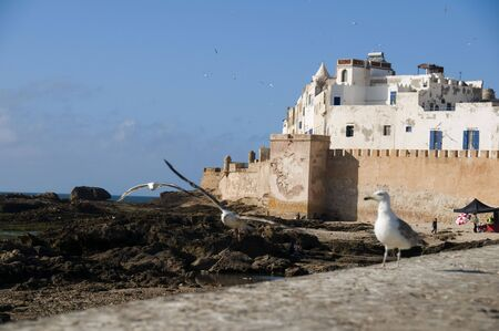 ramparts: ramparts fort and wall surrounding Essaouira, Morocco