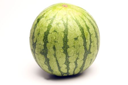 mini personal size seedless fresh watermelon which is much smaller and sweeter than a full size melon