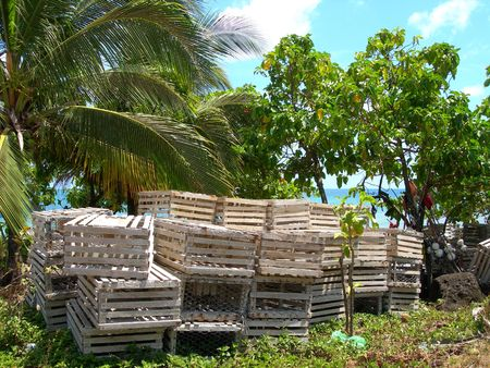 lobster pot:     lobster pot traps      on shore of caribbean sea big corn island nicaragua in central america