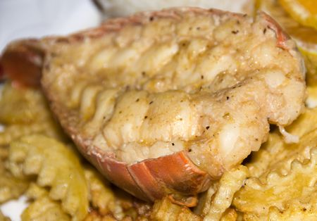 lobster tail: caribbean style lobster tail dinner with rice and vegetables plate as photographed in Nicaragua Central America Stock Photo