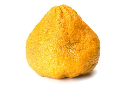 An Orange Color Ugly Fruit Hybrid Of Tangerine Grapefruit And Pomelo Grown In Jamaica