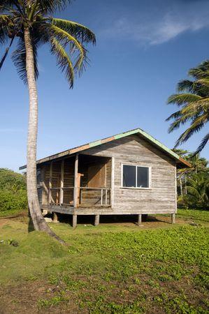 basic simple beach house cabana in jungle  coconut trees big corn island nicaragua central america Stock Photo - 6867718