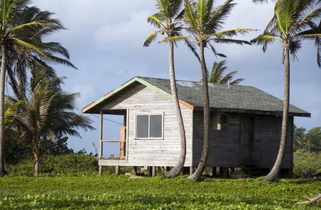 cabana: basic simple beach house cabana in jungle  coconut trees big corn island nicaragua central america Stock Photo