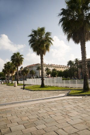pedestrian walkway:  seaside pedestrian walkway promenade with stone tiles and palm trees ajaccio corsica france Stock Photo