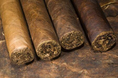 様々 な手の葉巻ニカラグアで作られたタバコの葉で圧延