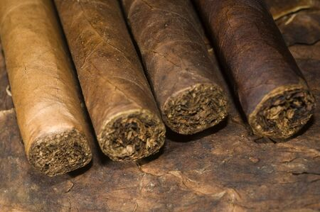 variety hand rolled cigars on tobacco leaf made in Nicaragua Фото со стока - 8052783