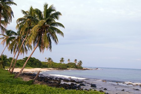 undeveloped: undeveloped Caribbean beach palm trees Content Point Big Corn Island Nicaragua Central America