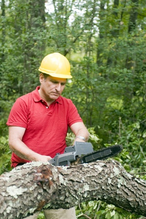 arborist tree surgeon wearing protective hard hat helmett using chain saw to cut fallen tree photo