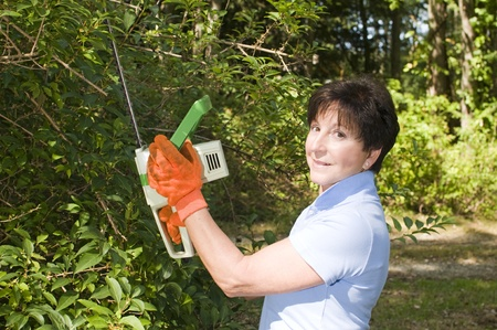 electric trimmer: middle age senior woman suburban backyard trimming hedges with electric hedge trimmer tool Stock Photo
