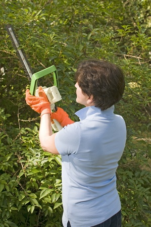 middle age senior woman suburban backyard trimming hedges with electric hedge trimmer tool photo