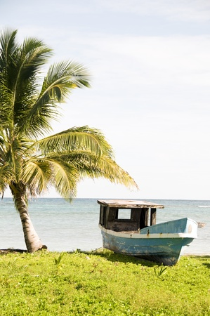 old abandoned fishing wood boat palm tree Corn Island Nicaragua