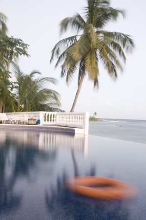 inground: infinity swimming pool life preserver coconut palm tree dusk Corn Island Nicaragua