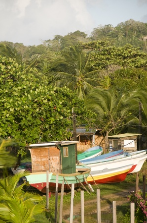 colorful native fishng boats in tropical jungle Big Corn Island Nicaragua Stock Photo - 12410930