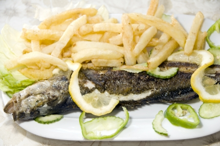 large whole grilled fresh fish French fries as photographed in Sidi Bou Said Carthage Tunisia Africa Stock Photo - 13885643