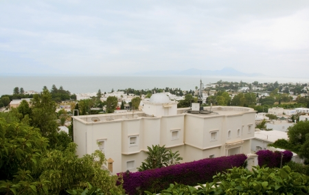 cityscape buildings mosque plants and trees Carthage Tunisia