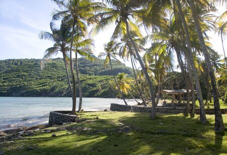 undeveloped: Crescent Industry undeveloped beach with gazebo hut Bequia St  Vincent and the Grenadines Caribbean Sea Stock Photo