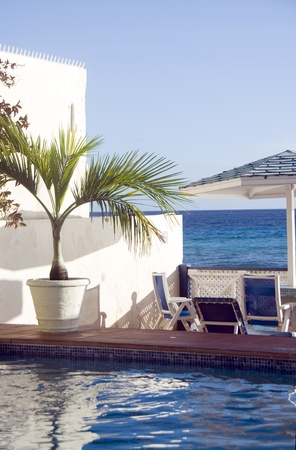 lawrence: swimming pool lounge chairs with tropical plant Caribbean Sea St  Lawrence Gap Barbados