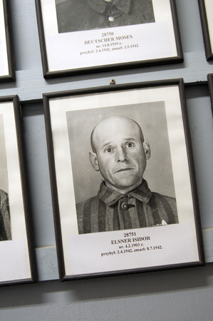 inmate: AUSCHWITZ-BIRKENAU-OCT. 15: Photo portrait of deceased inmate with date of arrival and date of death on display at Auschwitz-Birkenau Museum, Poland on Oct. 15, 2013. Editorial