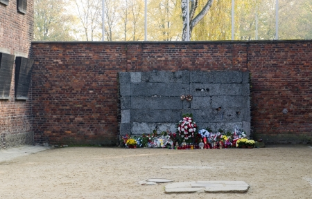tortured: memorial at the wall at Auschwitz German Nazi concentration death camp where thousand of Polish people  and Jews were executed or tortured Auschwitz-Birkenau Museum Poland