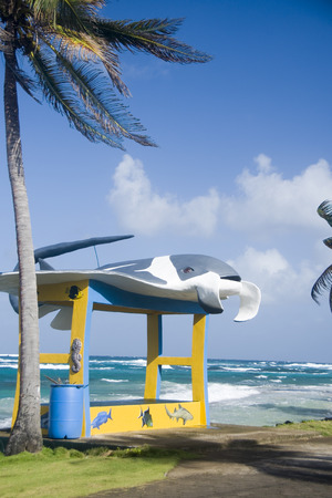 new bus stop with sting ray on main road Sally Peachie Corn Island Nicaragua Central America on Caribbean Sea