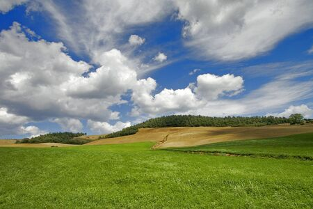 beautiful landscape at Valle Di Orcia, Italy Stock Photo - 4223058