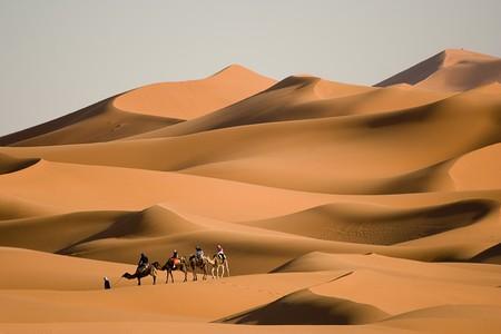 sahara: Camel trekking at Morocco