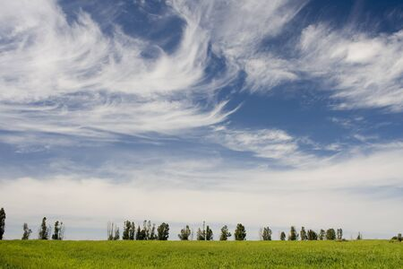 beautiful landscape at alentejo, portugal Stock Photo - 4263966