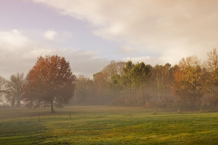 foggy landscape Stock Photo - 4264148